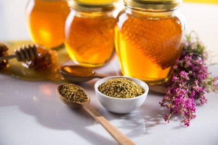 فوائد حبوب اللقاح مع العسل