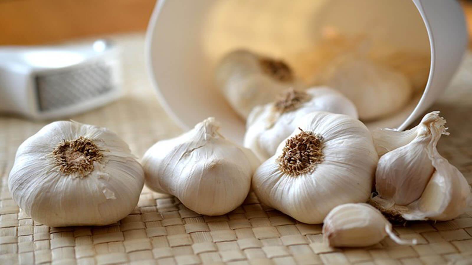 علاج البروستاتا بالثوم